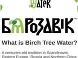 Birch juice, 100% natural, PET bottle. Сок березовый, 100% натуральный, ПЭТ-бутылка - photo 2