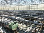 Fully equipped greenhouse for year-around farming - фото 5