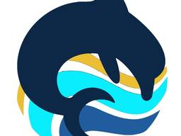 Swimssinki Academy